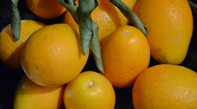 Glühwein mit Kumquats und Vanille