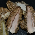 Morcheln halbieren