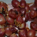 Trauben gebacken